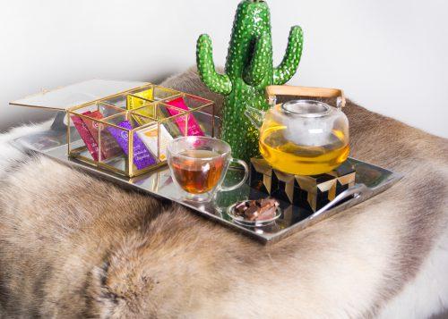 cactus vaas pomax