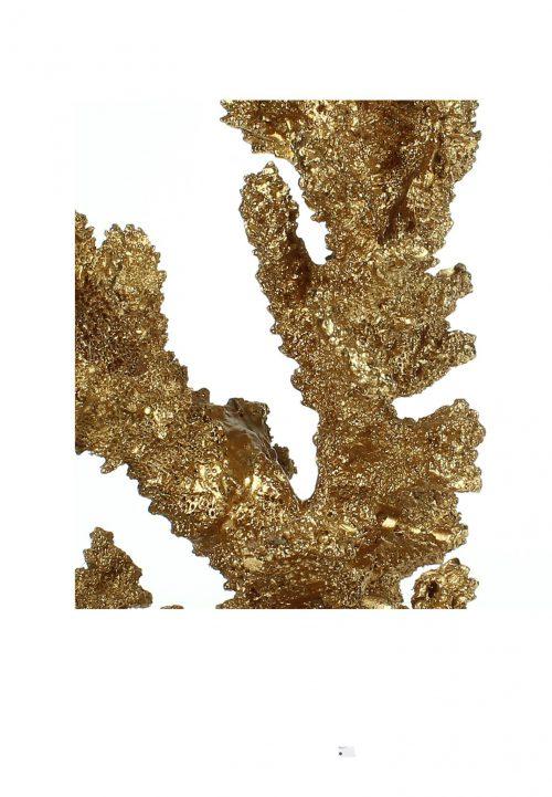 Ornament koraal goud